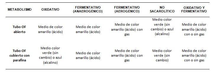 Meio OF: justificativa, preparação, usos e limitações 2