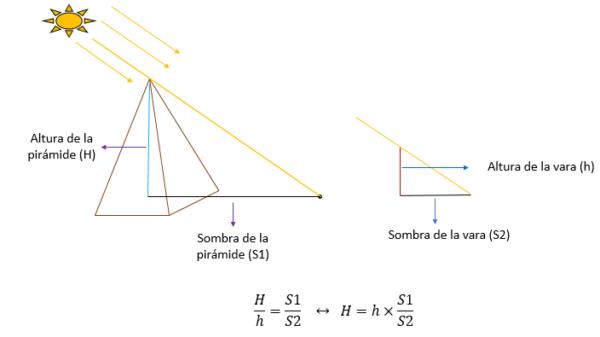 Teorema de Thales de Mileto: Primeiro, Segundo e Exemplos 6