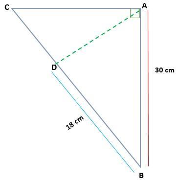 Teorema Euclidiano: Demonstração, Aplicação e Exercícios 15