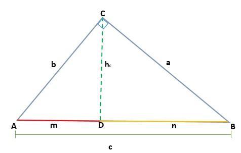 Teorema Euclidiano: Demonstração, Aplicação e Exercícios 4