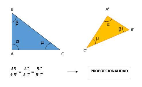 Teorema de Thales de Mileto: Primeiro, Segundo e Exemplos 2