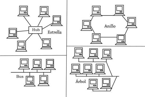 Topologias de rede: conceito, tipos e suas características, exemplos 2