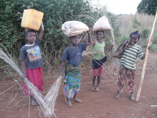Trabalho infantil: causas, tipos, consequências, distribuição e figuras 1