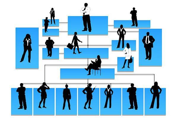 Seção de controle: tipos, fatores determinantes e exemplos 1