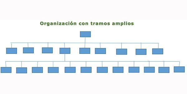 Seção de controle: tipos, fatores determinantes e exemplos 2
