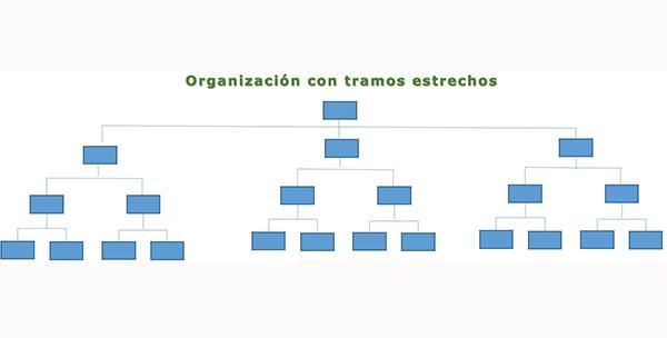 Seção de controle: tipos, fatores determinantes e exemplos 3