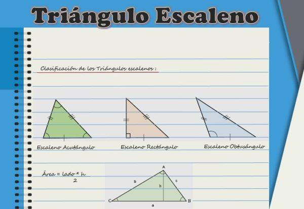 Triângulo escaleno: características, fórmula e áreas, cálculo 1