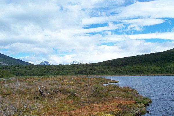 Pantanal: características, relevo, flora, clima, fauna, exemplos 2
