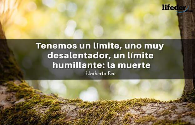 As 100 melhores frases de Umberto Eco 5