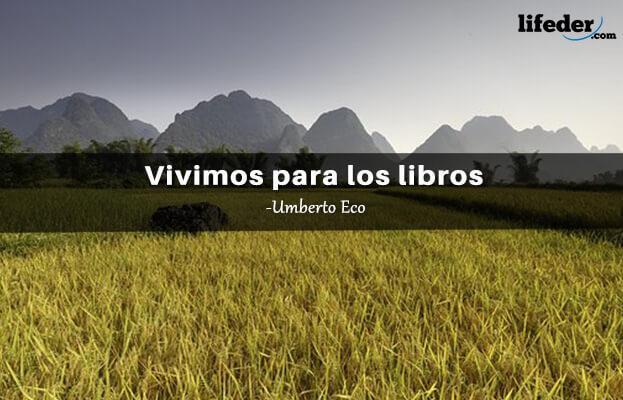 As 100 melhores frases de Umberto Eco 16