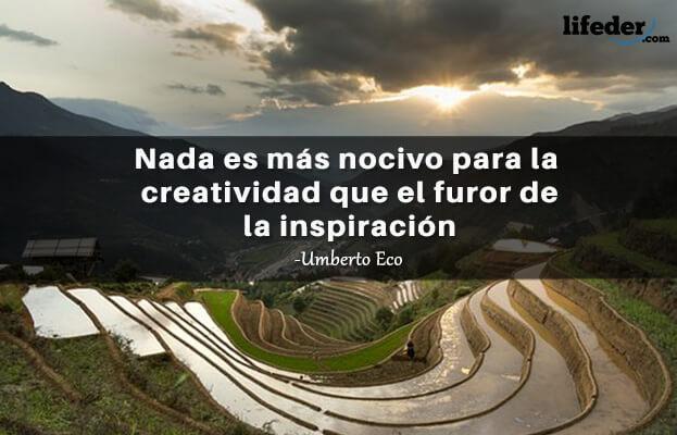 As 100 melhores frases de Umberto Eco 17