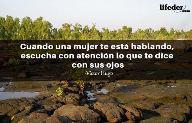 As 100 melhores frases de Victor Hugo 17
