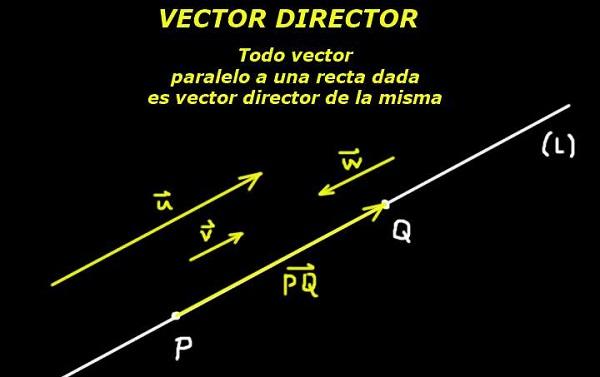 Diretor de vetor: equação da linha, exercícios resolvidos 1