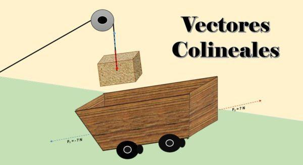 Vetores colineares: sistema e exemplos 1