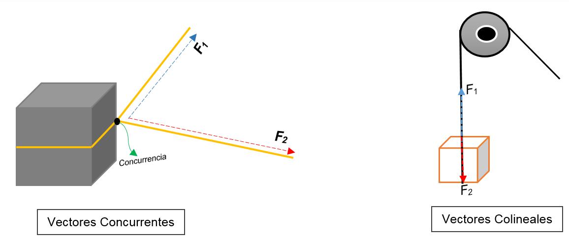 Vetores colineares: sistema e exemplos 9