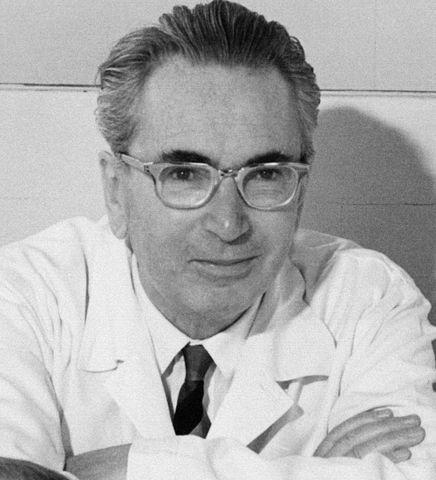 Viktor Frankl: Biografia, Teoria e Livros 1