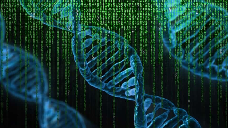 Biomoléculas orgânicas: características, funções e exemplos 1