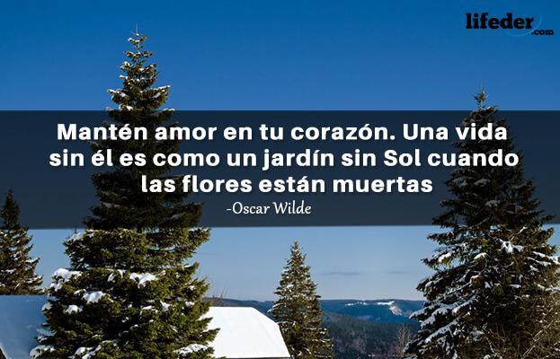 As 100 melhores frases de Oscar Wilde 10
