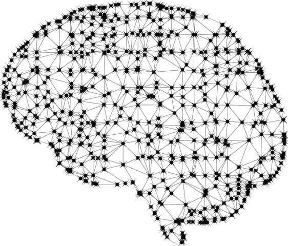 Glutamato (neurotransmissor): síntese, ação, funções 1