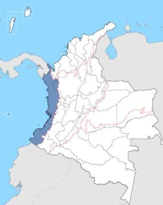 5 Atividades econômicas da região do Pacífico da Colômbia 1