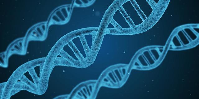 Biologia: história, o que estuda, ramos, bases 6