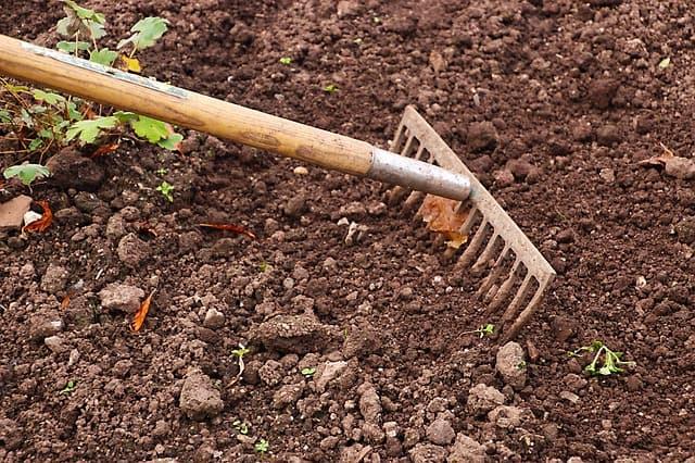 Agricultura de subsistência: características, tipos e exemplos 1