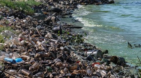 Como Prevenir a Poluição Ambiental: Água, Ar, Solo 2