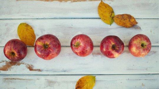 11 alimentos para diminuir o colesterol ruim (LDL) 1
