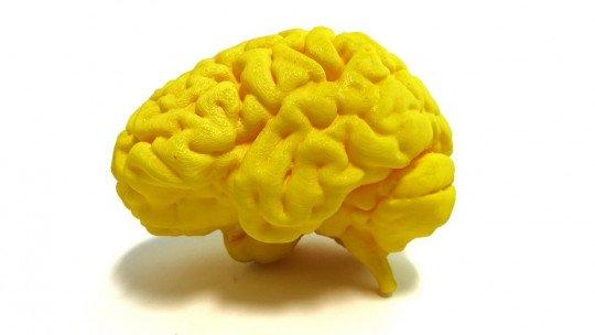 Áreas do cérebro especializadas em linguagem: sua localização e funções 1
