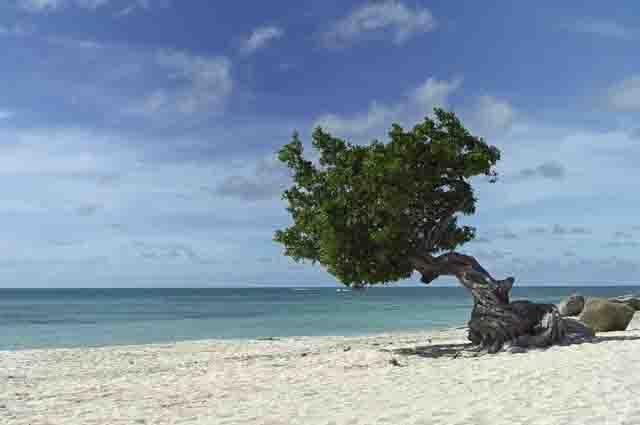 As 19 melhores praias do Caribe (com imagens) 12