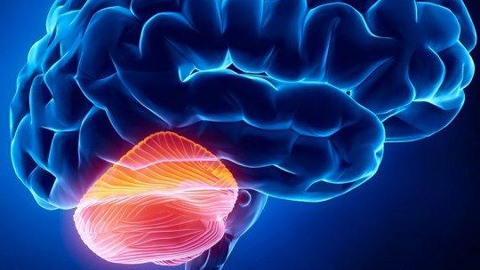 Ataxia: causas, sintomas e tratamentos 1