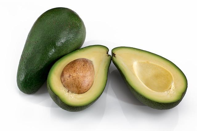 Abacate: características, distribuição, cultivo, pragas 3
