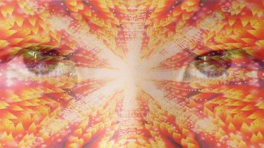 Os efeitos da ayahuasca: o que esse alucinogênio faz? 1