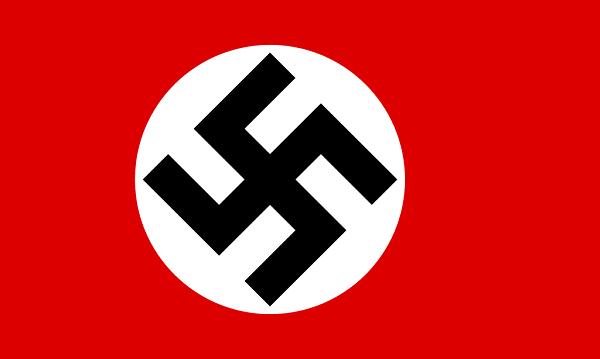 Bandeira da Estônia: História e Significado 5