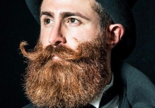 20 tipos de barbas juvenis e adultas (com fotos) 17