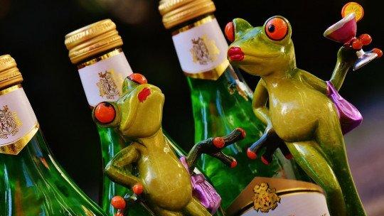 Beber álcool durante a adolescência modifica o cérebro 1