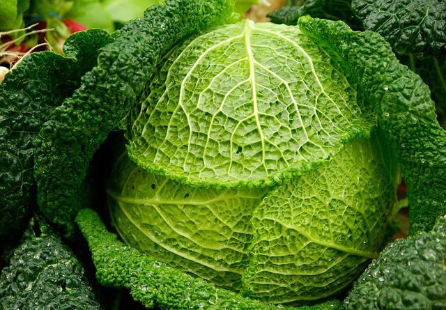 21 Alimentos naturais para o fígado natural (dieta hepatoprotetora) 8