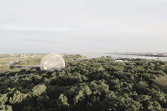 A importância da biosfera: 10 razões 1