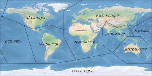 Regiões biogeográficas do mundo e suas características 1