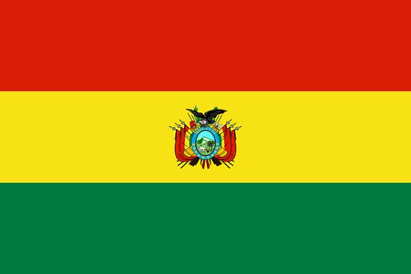 Bandeira da Bolívia: História e Significado 1