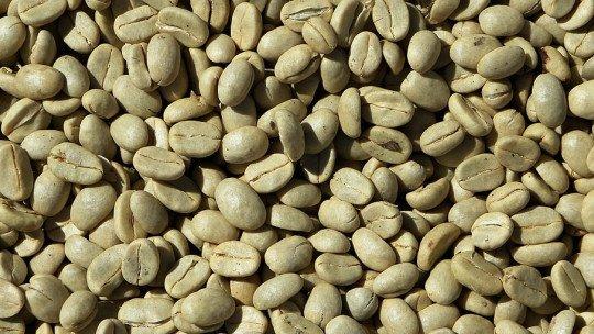 16 benefícios e propriedades do café verde 1