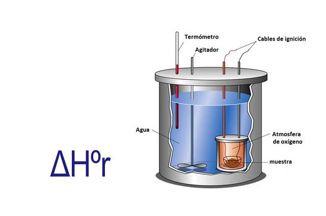O que é calor de reação? 17