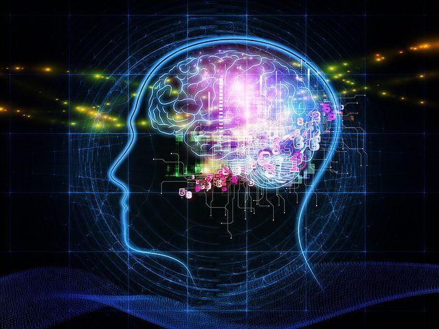 Principais teorias da aprendizagem: características e autores 6