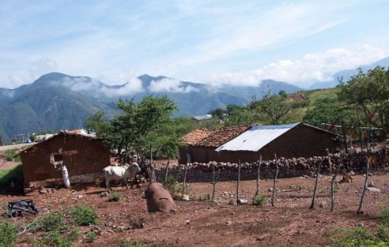 4 Principais Características da Área Rural 1