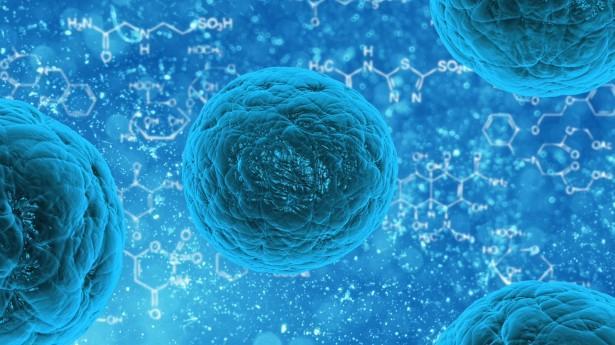 Origem celular: principais teorias (procarióticas e eucarióticas) 1