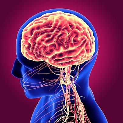 Rachaduras cerebrais e suas características 2