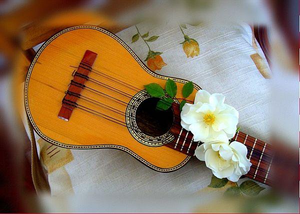15 instrumentos musicais da Argentina (folclórica e nativa) 2