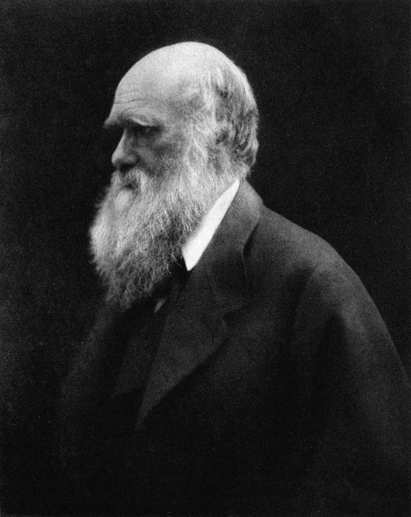 Charles Darwin: Biografia e teorias da evolução e seleção 1