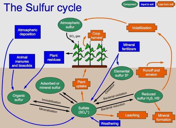 Sulfeto de hidrogênio (H2S): propriedades, riscos e usos 2