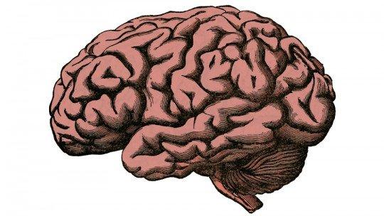 Rachaduras cerebrais: o que são, características e tipos 1